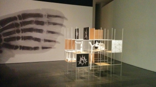 MACBA - Desires and necessities -Richard Hamilton - Growth and Forms
