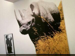 MACBA - John Baldessari -Dwarf and #Rhinoceros (With Large Black Shape) with story called lamb