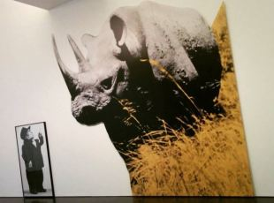 MACBA - John Baldessari -Dwarf and Rhinoceros (With Large Black Shape) with story called lamb
