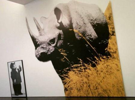 MACBA - John Baldessari -Dwarf and Rhinoceros (With Large Black Shape) with story called lamb