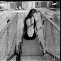 "Una delle muse ispiratrici per Jessica Rabbit, Vikki ""The Back"" Dougan - 1957"