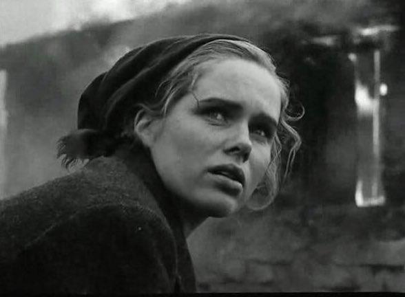 La Vergogna - Ingmar Bergman