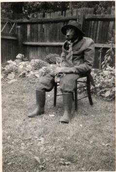 Un cane vestito da uomo con un gatto sul collo, circa 1950
