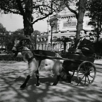 Salvador Dalí su una carrozza trainata dalla sua capra, 1953