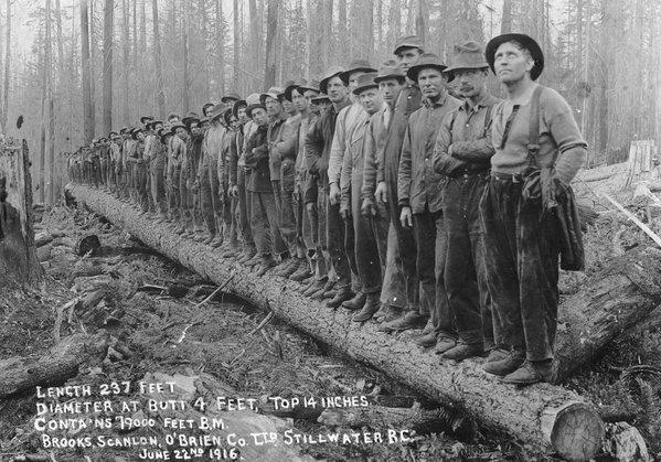 Tanti volti, tante storie - 1916 a Stillwater, British Columbia 100 anni fa (città di Vancouver Archivio)