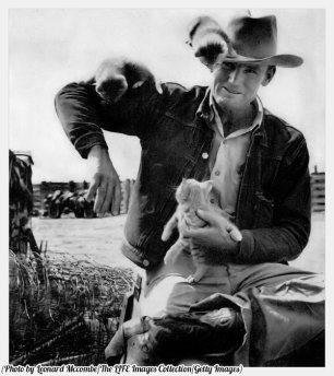 Il cowboy Clarence H. Long gioca con i gattini, 1949