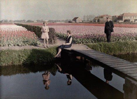 La gente del posto si rilassa nei campi di tulipani lungo il canale di Harlem, Paesi Bassi, 1931. Fotografia di Wilhelm Tobien