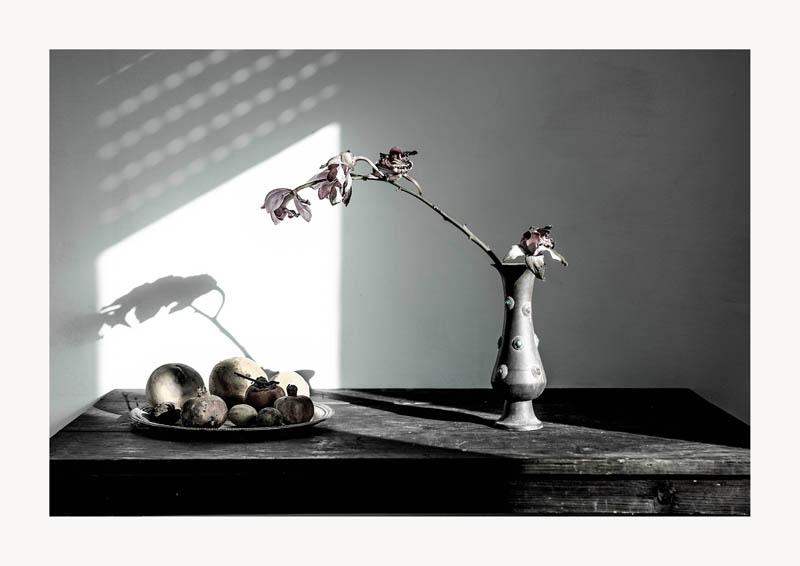 Michelangelo Arizzi - Natura morta con orchidee