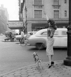 Angolo di strada di New York 1956
