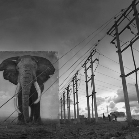 Nick Brandt - Inherit the Dust