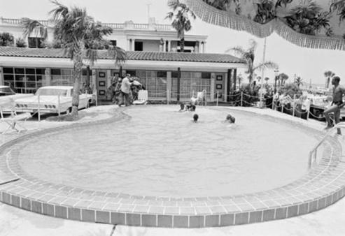Jimmy Brock butta l'acido in piscina