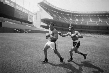 Muhammad Ali e Ken Norton scherzano inseguendosi allo Yankee Stadium