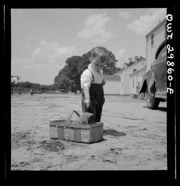 Un ragazzo con il suo cucciolo a Point Pleasant, West Virginia, 1943. Fotografia di Arthur S. Siegel