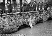 Un orso polare nel recinto allagato dei Giardini Botanici di Parigi durante l'alluvione del 1910