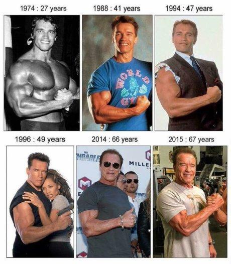 Il bicipite preferito di Arnold. 1974 - 2015