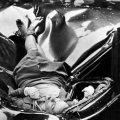 La morte di Evelyn McHale fotografata da Robert C Wiles – Immagine originale