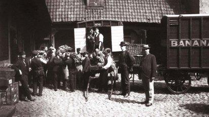 Le prime banane in Norvegia, 1905