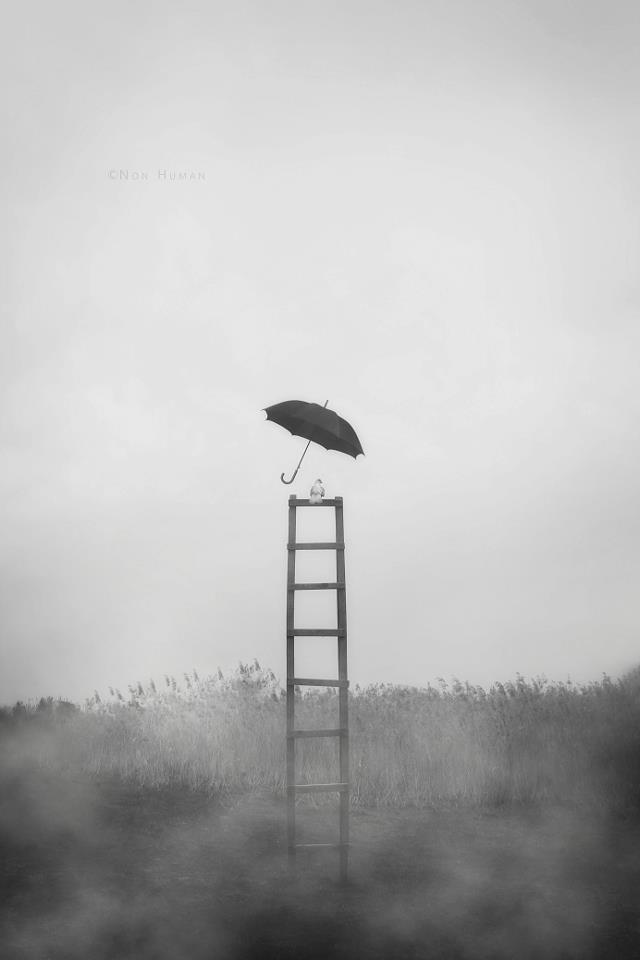 """Something Like Legendary Dream"" by Mojtaba Nasiri"