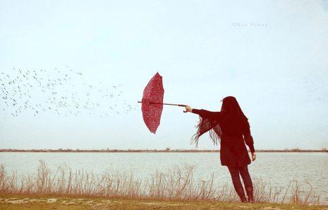 """""""Feels for a dream"""" by Mojtaba Nasiri"""