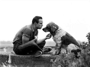 Marlon Brando, 1950. Fotografia di Art Shay