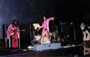 Alice Cooper getta un pollo sul pubblico, 1969