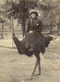 Una donna in sella a uno struzzo