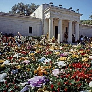 Il record dei fiori venduti in un solo giorno nella storia degli Stati Uniti è stato il giorno dopo la morte di Elvis Presley, 1977