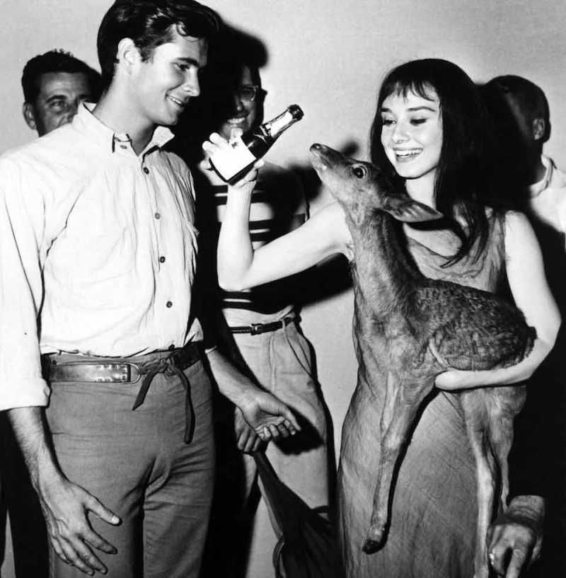 Audrey Hepburn & Anthony Perkins, 1959