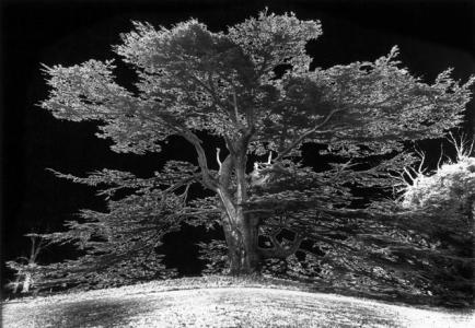 Ugo Mulas - Scenografia per Giro di Vite, 1969
