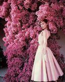 Audrey Hepburn per Vogue, 1955