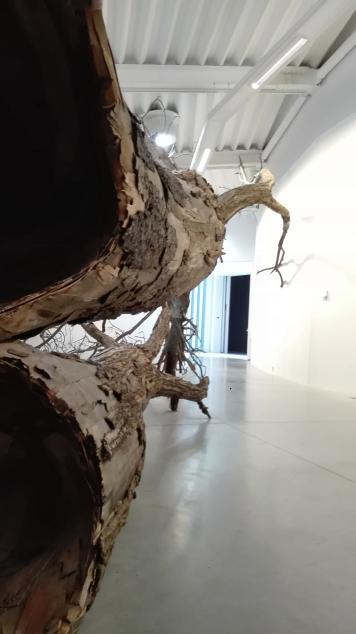 """""""Transcorredor"""" di Henrique Oliveira, 2014 @ Centro Pecci di Prato - La fine del mondo"""