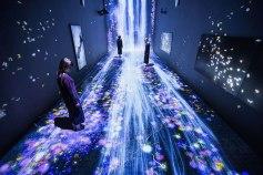 """""""Transcending Boundaries"""" by TeamLab"""