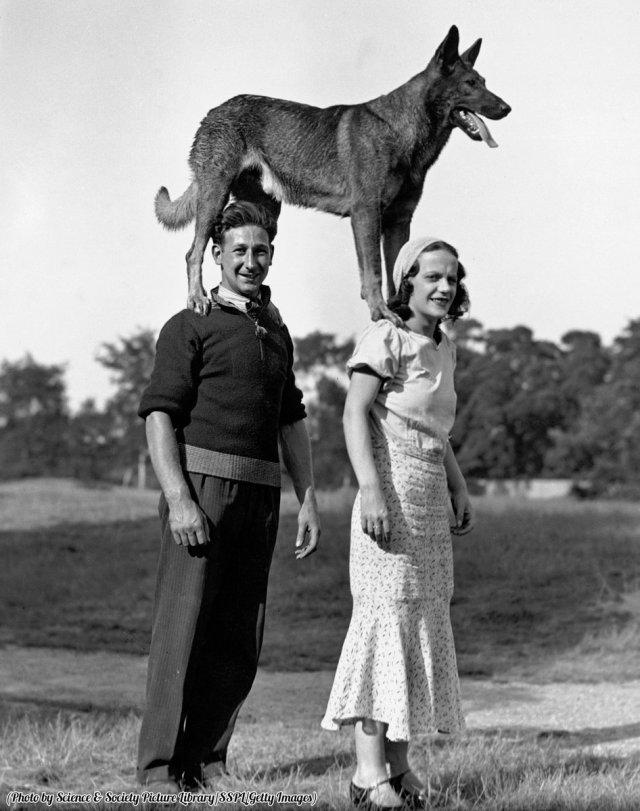 Coppia con un cane in piedi sulle spalle, Regno Unito, circa 1910