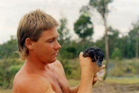 Steve Irwin con un piccolo ornitorinco, anni '80