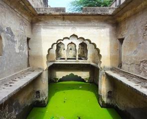 The Vanishing Stepwells of India - Victoria Lautman