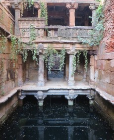 The Vanishing Stepwells of India - Victoria Lautman (Batris Kotha Vav. Kaoadvanj, Gujarat c. 1120)