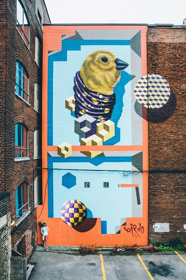BirdO @Toronto, Canada