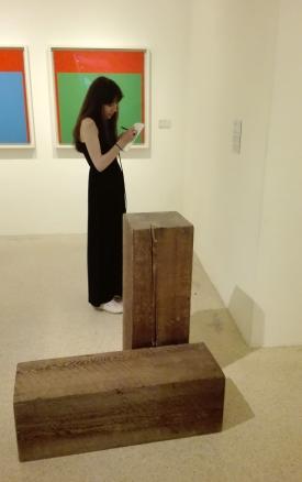"Collezione Peggy Guggenheim - Ellsworth Kelly, ""Rosso verde"" (1964)"