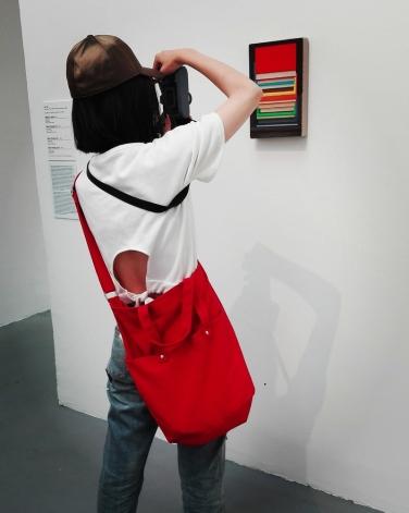 Biennale Arte 2017 - Padiglione Centrale (Giardini): Book Painting by Liu Ye (Cina)