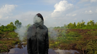 Mark Jenkins @Peatland Riau - Photo Credit Ernest Zacharevic