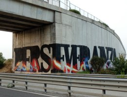Manu Invisible - Perseveranza - Spray and quartz paint on wall - ss. 131 2015