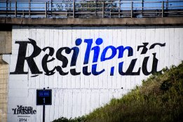 Manu Invisible - Resilienza 2016