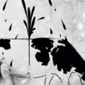 Fabio Costantino Macis – Who Cares! – The Cowgirl