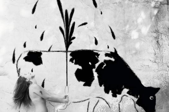 Fabio Costantino Macis - Who Cares! - The Cowgirl
