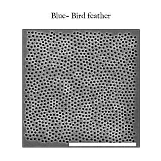 Giovanni Casu - colours explained (2014)
