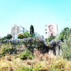 Lisbona - Itinerario street art- Festival MURO: Medianeras & Gleo