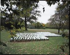 Pedro Cabrita Reis - You Shouldn't Walk Over Ploughed Fields - 2005 travi in acciaio, acrilico su tubi fluorescenti, cavo elettrico 1000x1300x70 cm veduta dell'installazione, Regen