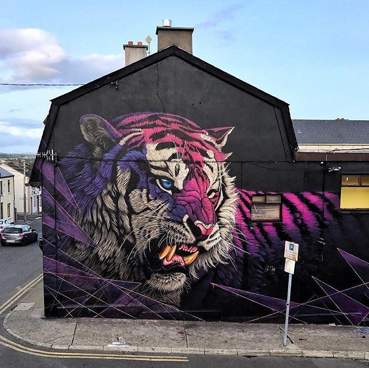 Sonny Sundancer @Waterford, Ireland