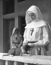 Audrey Hepburn con un simpatico cucciolo nel Congo belga per il suo film The Nun's Story, 1958