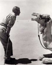 Peter O'Toole parla col suo co-protagonista sul set di Lawrence of Arabia